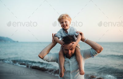 Father with a toddler boy standing on beach on summer holiday, having fun.