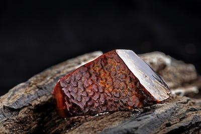 Natural amber. A piece of dark red semi transparent natural amber on piece of stoned wood