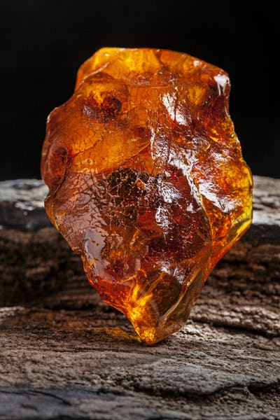 Natural amber. A piece of yellow and red semi transparent natural amber on piece of stoned wood