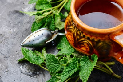 Tea with green fresh melissa leaves