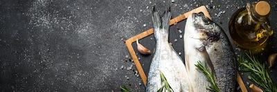 Raw dorado fish on black background
