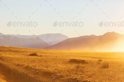 Field in Argentina