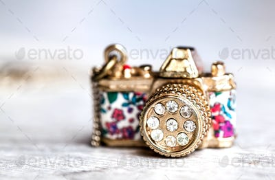 jewelery, camera with zirconium in beautiful flowers on a gray background