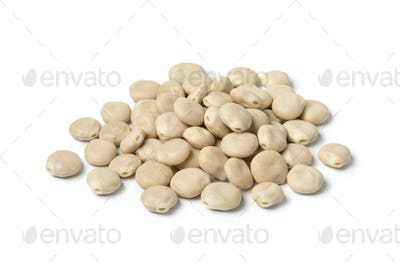 Raw dried white lupin seeds