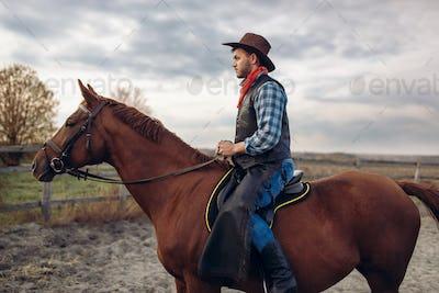 Cowboy riding a horse on texas farm