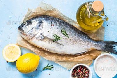 Fresh fish dorado on blue background