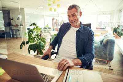 Smiling mature businessman sitting at his office desk working online