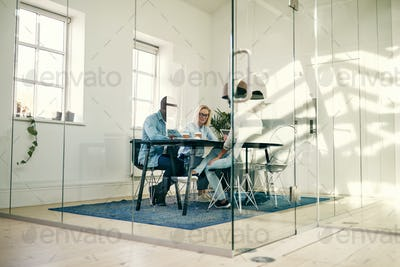Diverse young office colleagues discussing business together in a boardroom