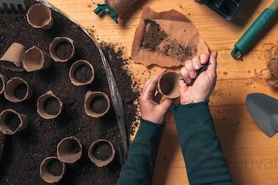 Gardener filling biodegradable soil pot container