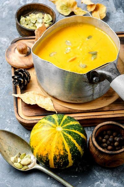 Soup cream of pumpkin