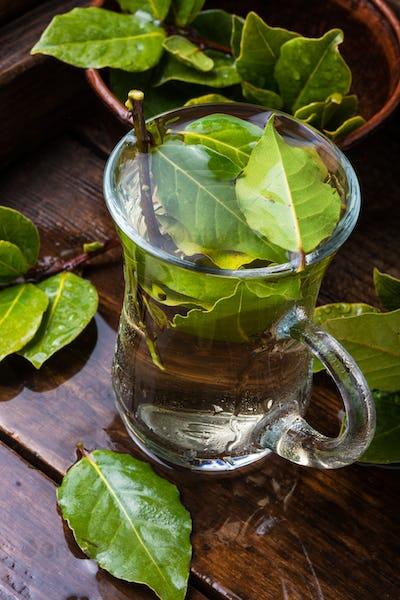 Tea with bay leaf