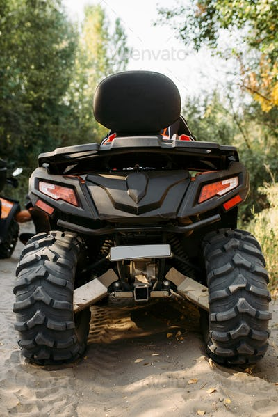 Quad bike in the forest, back view, nobody