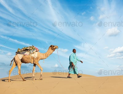 Cameleer (camel driver) with camels in Rajasthan, India