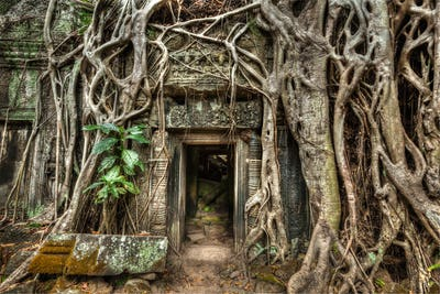 Ancient stone door and tree roots, Ta Prohm temple, Angkor, Camb