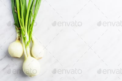 Fresh spring onions on marble table