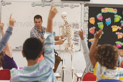 Front view of a teacher explaining about human skeleton in classroom at school