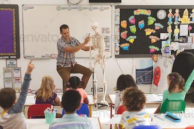 Teacher explaining human skeleton in classroom at school