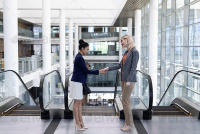 Side view of smiling young multi-ethnic businesswomen shaking hand standing in modern office