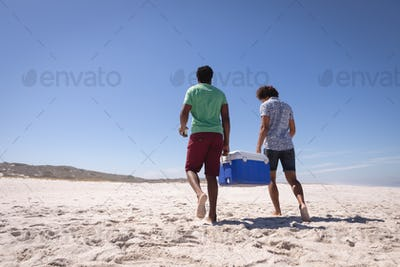 Rear view of young mixed race men carrying ice box while walking on the beach in the sunshine