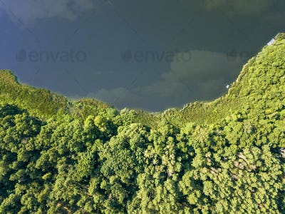 River with reflection of clouds and deciduous forest on a summer day. Aerial view from the drone