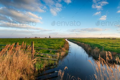 Looking out to Halvergate Mill on Berney Marshes