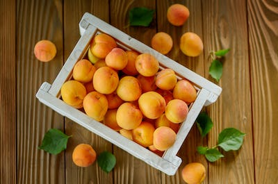 White wooden crate with apricots on table. Top View.