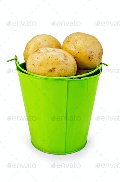 Potatoes yellow in a green bucket