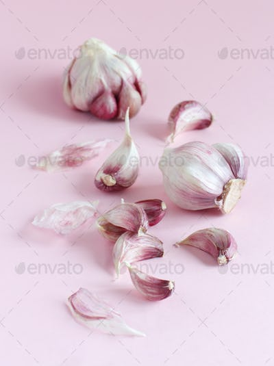 Fresh garlic on a light pink background