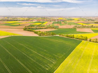 Colorful agricultural fields at spring, aerial drone view