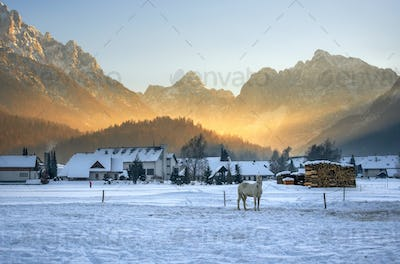 Winter sunset in the snowy mountains