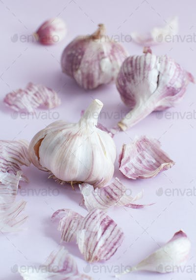 Fresh garlic on a pastel background
