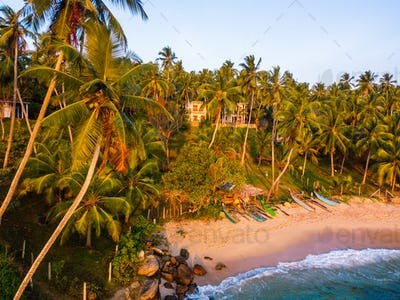 Sunset on a tropical beach with palm trees