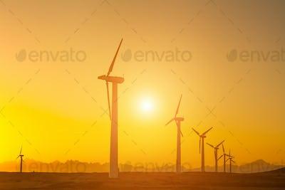 Electric wind turbines farm silhouettes on sun background