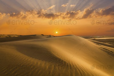 Golden sands and dunes of the desert. Mongolia