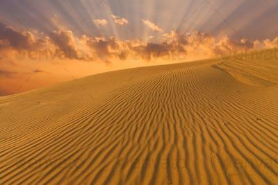 Beautiful desert landscape with sand dunes. Mongolia.