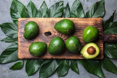 Food Background with Avocado and Avocado Tree Leaves