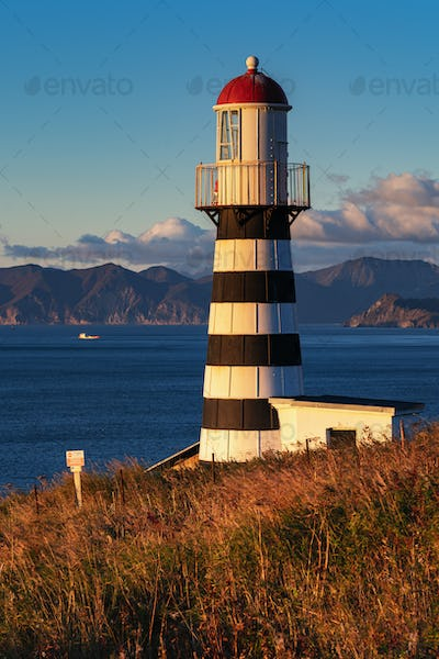 Lighthouse on Pacific Coast in Morning at Sunrise
