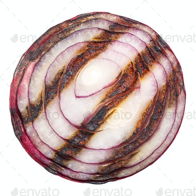 Grilled onion slice, top, paths