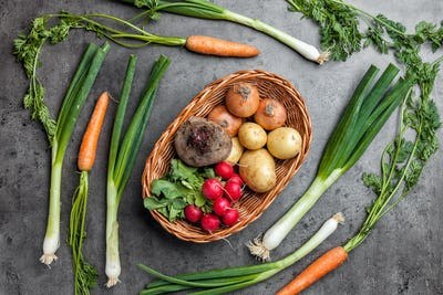 Fresh organic root vegetables on rustic background