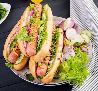 Hot dog with  sausage, cucumber, radish and lettuce on dark wooden background. Summer hotdog.