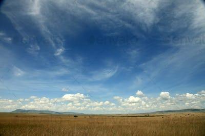 The Great Rift Valley - Maasai Mara - Kenya