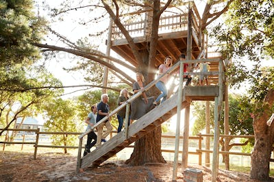 Multi-Generation Family Climbing Outdoor Wooden Platform To Tree House In Garden
