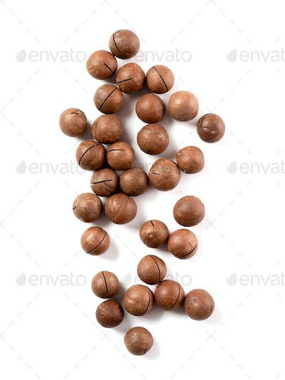 macadamia isolated on white, top view