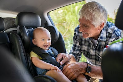 Man fasten seat belt for cute toddler