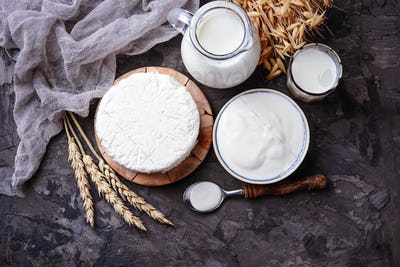 Dairy products milk, cottage cheese, sour cream and wheat