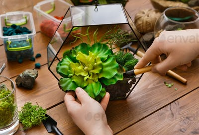 Home gardening concept