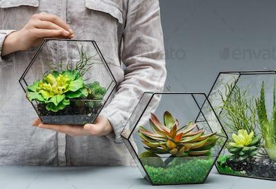 Professional florist concept