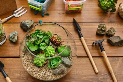 Set for home gardening concept