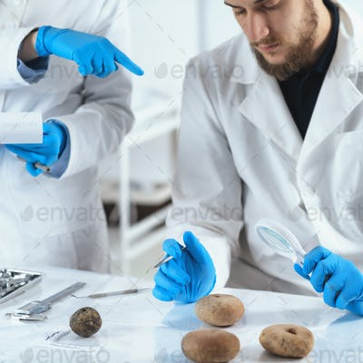 Archeology Scientists Analyzing Ancient Weight in Laboratory
