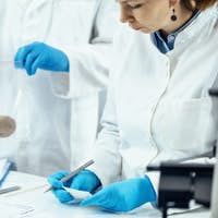 Archeology Scientists Working in Laboratory